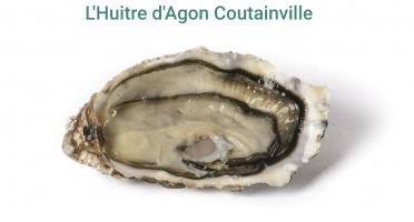 Buccimarée - Huître Creuse De Pleine Mer Naturelle N°3- 4kg