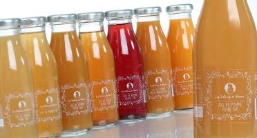 Les délices de Noémie - Lot De Jus Bio pour bébé: Raisin Rouge, Pomme-poire, Pomme-abricot (6x25cl)