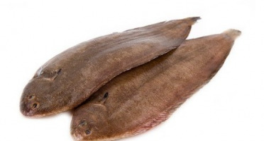 Ma poissonnière - Sole - Lot De 4 Pièces