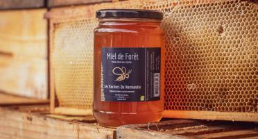 Les Ruchers de Normandie - Miel de Forêt liquide 1kg
