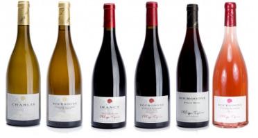 Domaine TUPINIER Philippe - Lot Découverte :  Les Vins Tranquilles Du Domaine