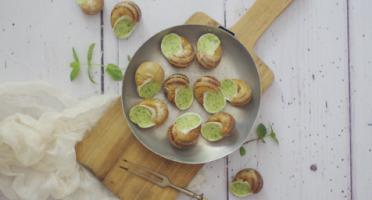 Limero l'Escargot Mayennais - Assiette De 12 Coquilles D'escargot Gros Gris Frais À La Bourguignonne - Lot de 2