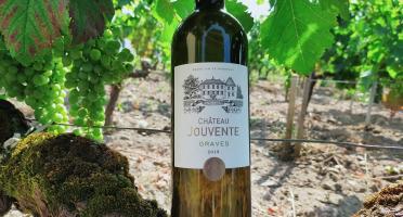 Château Jouvente - Château Jouvente AOC Graves Blanc 2018 - 1 Bouteille