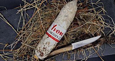 Domaine de Bellecour - Yvon le saucisson - Saucisson de bœuf Highland - 250 g