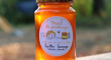 Papilles Sauvages - Miel De Printemps