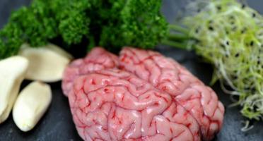 Triperie Française - Cervelle d'agneau