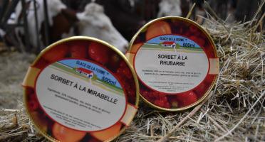 Les Glaces de la Promesse - Sorbet Rhubarbe Et Sorbet Mirabelle 2x 500 Ml