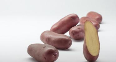Maison Bayard - Pommes De Terre Chérie - 5kg