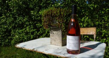 Domaine Ghislain Kohut - Lot 6 Bouteilles de Marsannay Rosé AOC