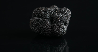 ALENA la Truffe d'Aquitaine - Truffe Noire Du Périgord FraicheTuber Melanosporum - 1ère Catégorie - 500g