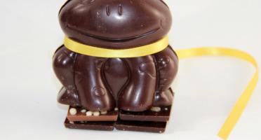 Mon jardin chocolaté - Grenouille De Pâques Chocolat Noir