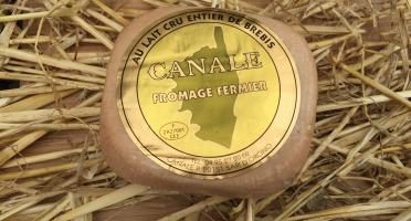 Depuis des Lustres - Comptoir Corse - Fromage fermier de brebis Canale - 350 g