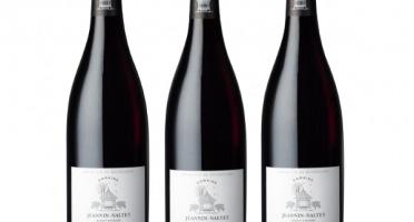 Domaine Jeannin-Naltet - Mercurey Vieilles Vignes 2017 - 3 Bouteilles