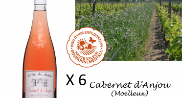 Le Clos des Motèles - Aoc Cabernet D'anjou 2019: 6 Bouteilles