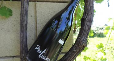 Domaine des Bourrats - Saint Pourçain AOC Rouge Cuvée Pinotissime