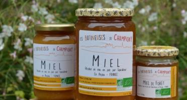 Les Butineuses de Champigny - Miel de Forêt Bio - 1000 g