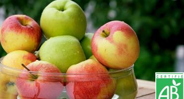 Le Châtaignier - Pommes Bio - Assortiment 5 Kg