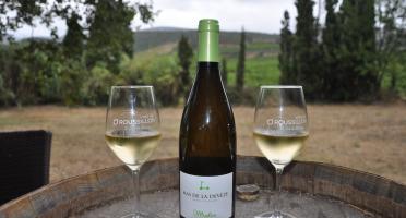 Mas De La Devèze - Côte du Roussillon AOP - Malice Blanc 2019 x6