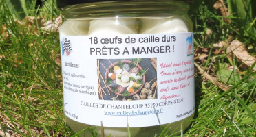 Cailles de Chanteloup - LOT 18 oeufs de cailles écalés et cuits + 1 rillettes 90 gr