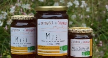 Les Butineuses de Champigny - Miel de Châtaignier Bio - 1000 g