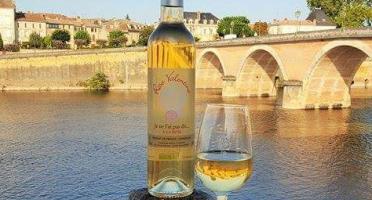Les Douceurs de Lolla - Boisson À Base De Vin Aromatisée Aux Pétales De Rose Bio- Lot De 6 Bouteilles