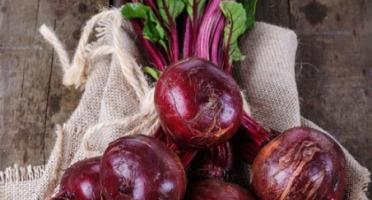 La Boite à Herbes - Betterave Rouge Crue Bio - 1kg