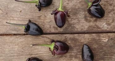 HERBA HUMANA - Piment frais frais Purple