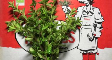 La Boite à Herbes - Marjolaine Bio - 50g