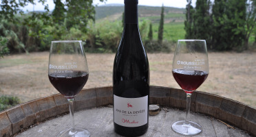 Mas De La Devèze - Côte du Roussillon AOP - Malice Rouge 2019