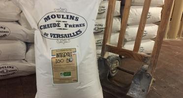 Moulins de Versailles - Farine De Blé Bio T150 / Intégrale - 25kg