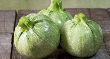 La Boite à Herbes - Courgette Ronde - 1kg