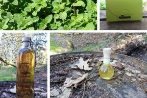 Vinaigres de la Carrière - Saveur Verveine et Marjolaine : Eau de Vie + Grand Ballotin de Chocolat + Vinaigre de Cidre à la Verveine