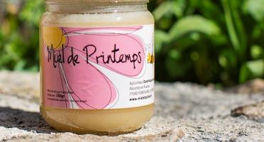 Miel et Pollen - Miel de Printemps - 250gr