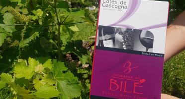 Domaine de Bilé - Fontaine à Vin BIB Rouge Boisé IGP Cotes de Gascogne 5 Litres