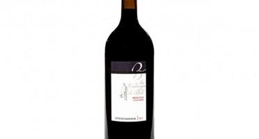Domaine de Bilé - IGP Vin Côtes de Gascogne Rouge Vendanges Mains - 1 Magnum
