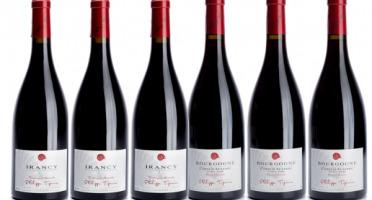 Domaine TUPINIER Philippe - Lot De 2 Vins Rouges : Côte D'Auxerre Rouge 2015  Et Irancy AOC 2017 - 6 Bouteilles