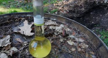 Vinaigres de la Carrière - Vinaigre de Cidre au Sureau bio - 200 ml
