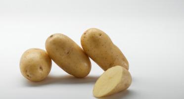 Maison Bayard - Pommes De Terre Laurette - 5kg