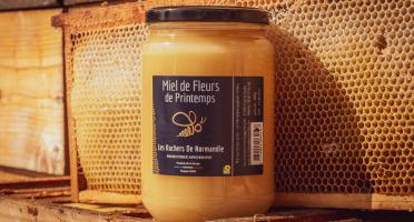 Les Ruchers de Normandie - Miel de Fleurs de printemps crémeux  1kg