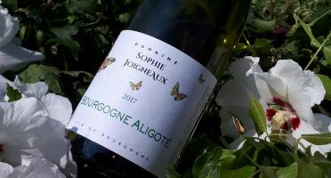 Domaine Sophie Joigneaux - AOP Bourgogne Aligoté 3x75cl Millésime 2020