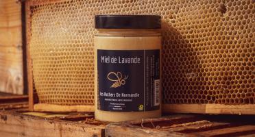 Les Ruchers de Normandie - Miel de Lavande 500g