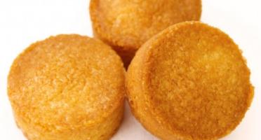 Compagnie Générale de Biscuiterie - Palets Bretons Recette Traditionnelle au Fin Beurre Salé et Farine de Sarrasin