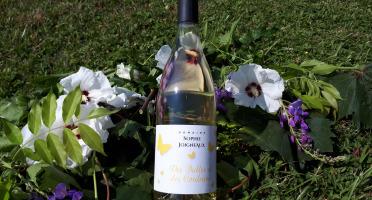 Domaine Sophie Joigneaux - IGP Blanc Sainte-Marie la Blanche Millésime 2018