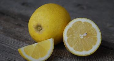 La Boite à Herbes - Citrons Bio Primofiori X2