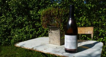 Domaine Ghislain Kohut - Lot 6 Bouteilles de Bourgogne Aligoté AOC