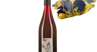 Réserve Privée - Anjou Bio - Domaine les Grandes Vignes - Pineau d'Aunis Rouge 2018