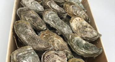 Buccimarée - Huître Creuse De Pleine Mer Naturelle N°3 - 3kg