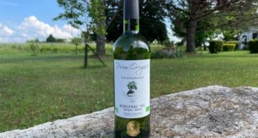 Vignobles Fabien Castaing - AOC Bergerac Blanc Sec  Prim'Origine 2019 - 6x75cl