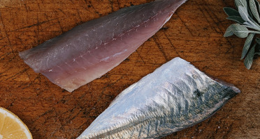 Côté Fish - Mon poisson direct pêcheurs - Filets De Gascon 300g