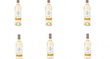 Domaine de Bilé - IGP Vin Cotes de Gascogne Blanc Sec - 6 Bouteilles